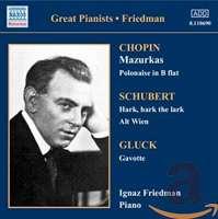 Ignaz Friedman - Complete Recordings Vol.3