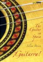 The guitar in Spain