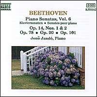 BEETHOVEN: Piano Sonatas Vol. 6