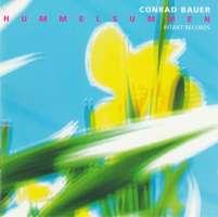 Conrad Bauer: Hummelsummen