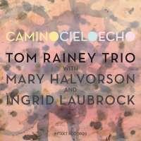 Laubrock/Halvorson/Rainey: Camino Cielo Echo