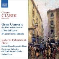CIARDI: Music for flute ...