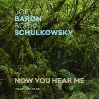 Baron/Schulkowsky: Now You Hear Me