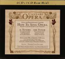 How to Sing Opera - Master Class for Students and Amateurs - The Tenor