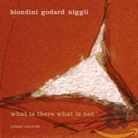 Biondini/Godard/Niggli: What Is There What Is Not